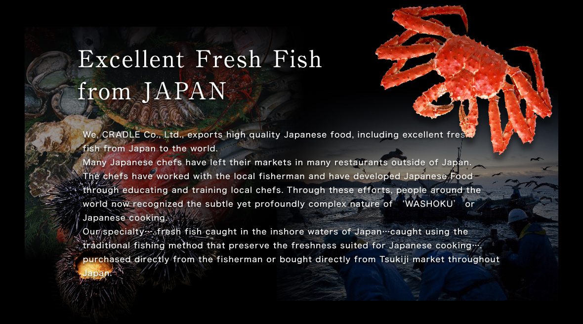 Excellent Fresh Fish from JAPAN
